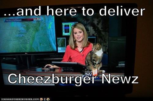 Cheezburger Image 6803354368