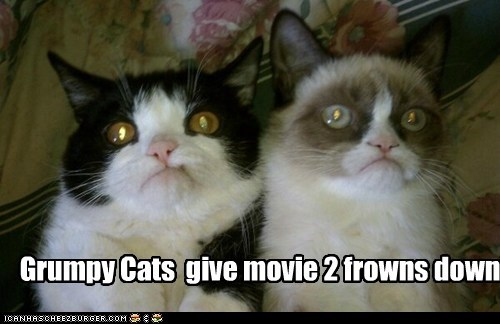 Grumpy Cats give movie 2 frowns down