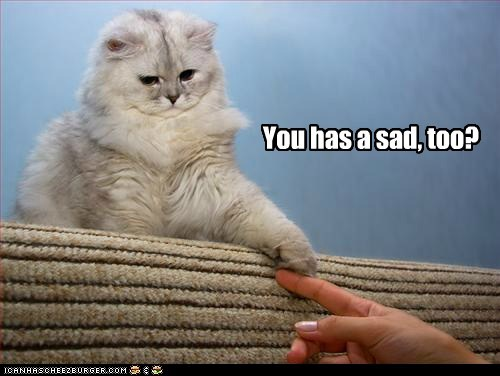 Sad captions help friend depression Cats - 6804380160