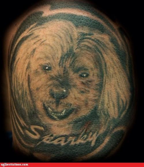 sparky dogs - 6804596224