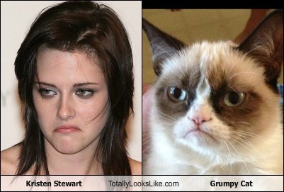 kristen stewart actor TLL meme Grumpy Cat tard Cats funny animals - 6805542656