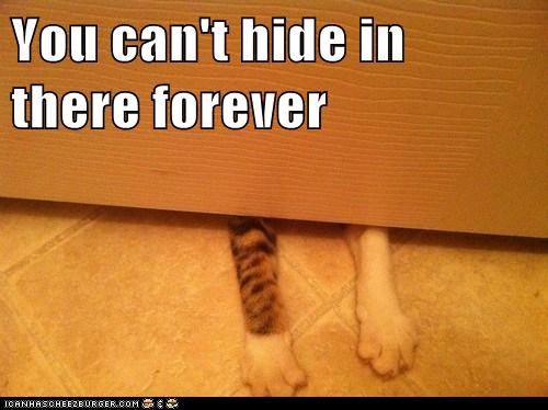 You can't hide in there forever