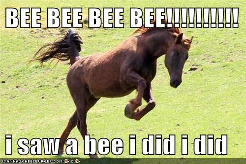 panicking scared bees horses jumping - 6805875456