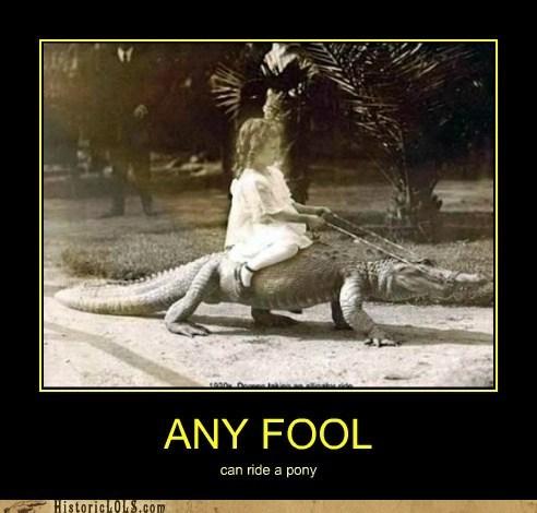 ride crocodile alligator kid girl - 6806288640