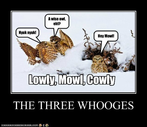THE THREE WHOOGES
