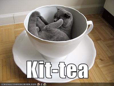 Kit-tea