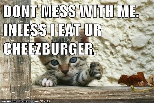 Cheezburger Image 6807238400