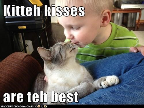 Kitteh kisses  are teh best