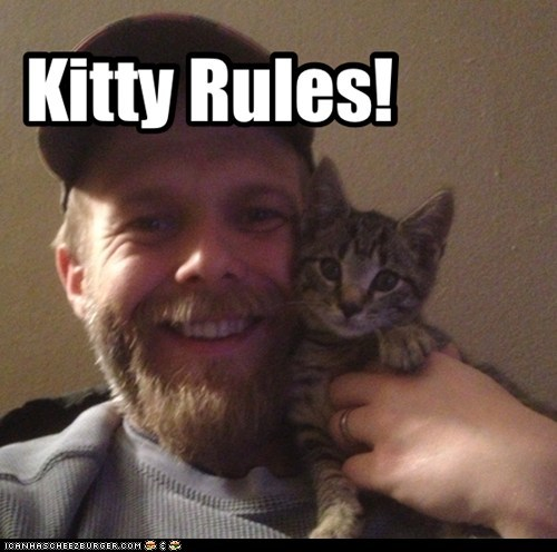 Kitty Rules!