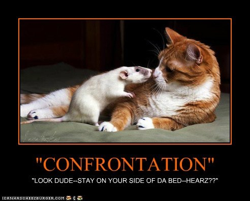 """CONFRONTATION"" ""LOOK DUDE--STAY ON YOUR SIDE OF DA BED--HEARZ??"""