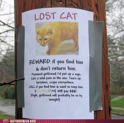 girlfriend,exes,don't want him,Lost Cat