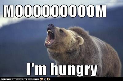 MOOOOOOOOOM I'm hungry - Animal Comedy - Animal Comedy, funny animals,  animal gifs