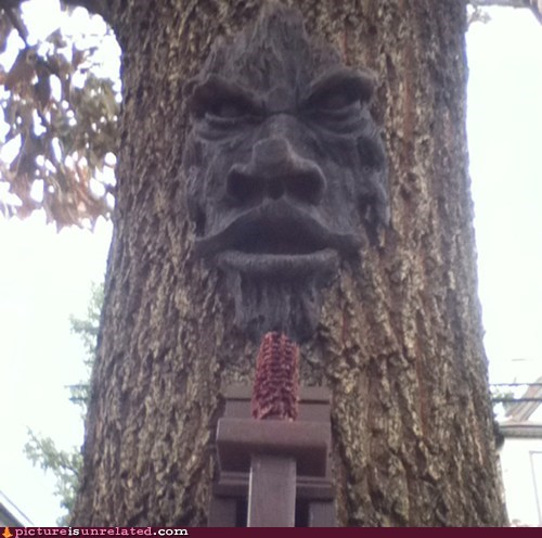 face creepy wut tree - 6808961536