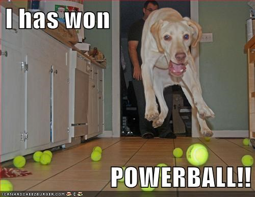 dogs tennis balls lottery power ball what breed jumping