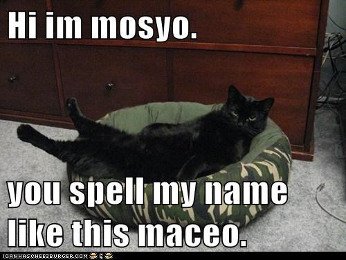 Hi im mosyo.  you spell my name like this maceo.