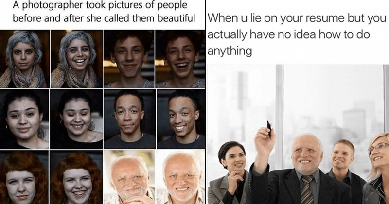 hide the pain harold memes | Person - photographer took pictures people before and after she called them beautiful | Woman - u lie on resume but actually have no idea do anything
