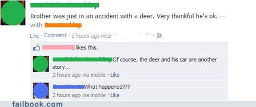 brother car crash car accident deer - 6810354432