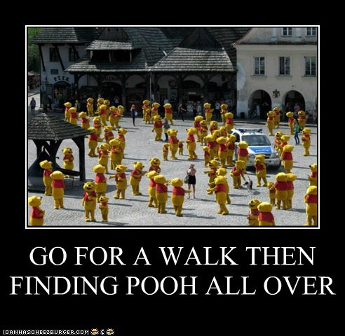 GO FOR A WALK THEN FINDING POOH ALL OVER