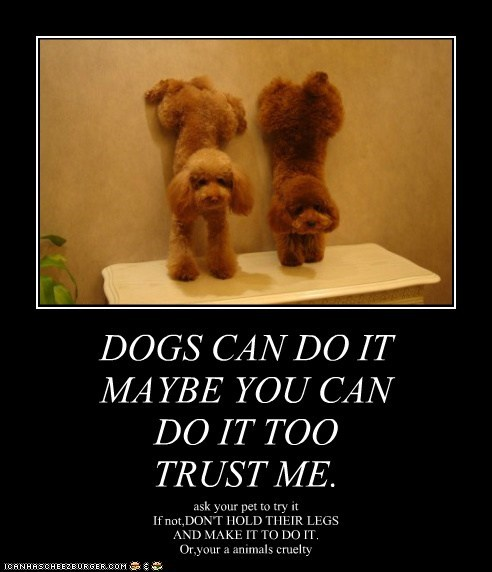 DOGS CAN DO IT MAYBE YOU CAN DO IT TOO TRUST ME.