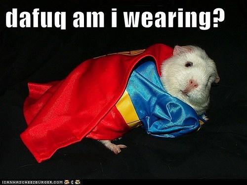dafuq am i wearing?