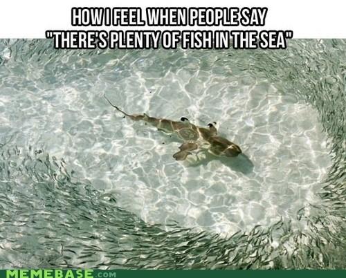 fish in the sea emo shark - 6813070080