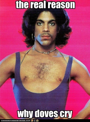 Music prince funny - 6813415424