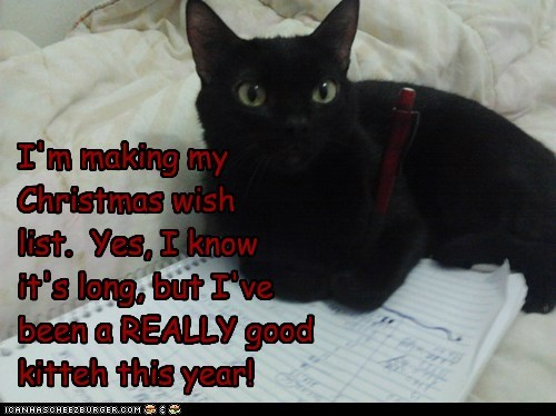 I'm making my Christmas wish list. Yes, I know it's long, but I've been a REALLY good kitteh this year!