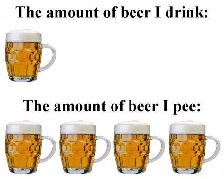 beer,drinking,alcohol,doesnt-make-sense,pee