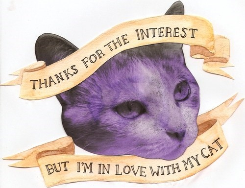 cat ladies thanks but no thanks cat people relationships love Cats