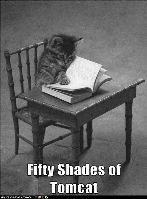 Fifty Shades of Tomcat
