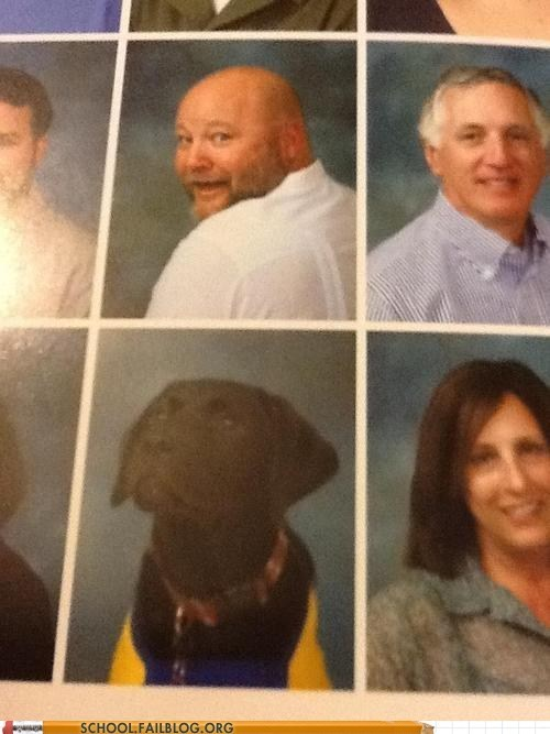 yearbook club dogs - 6814555648