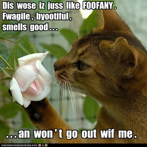 Dis wose iz juss like FOOFANY . Fwagile , byootiful , smells good . . . . . . an won ' t go out wif me .