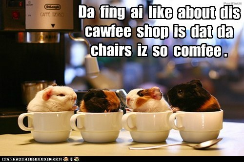Da fing ai like about dis cawfee shop is dat da chairs iz so comfee .