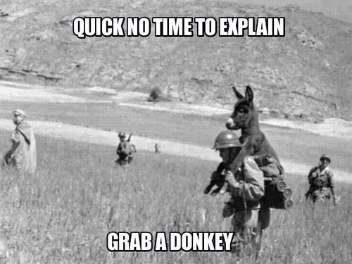 no time to explain,grab,donkey,carrying,army