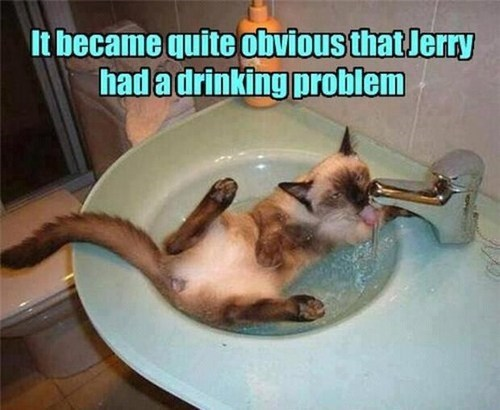 water Jerry drinking problem
