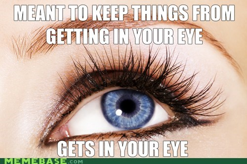 scumbag eyes eyelashes - 6815941888