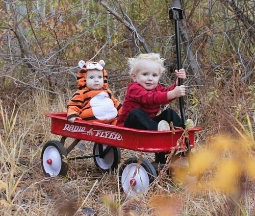 cosplay calvin and hobbes kids cute - 6816107008