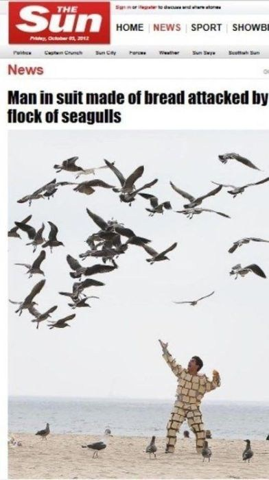 headline,seagulls,bread,poorly dressed,g rated