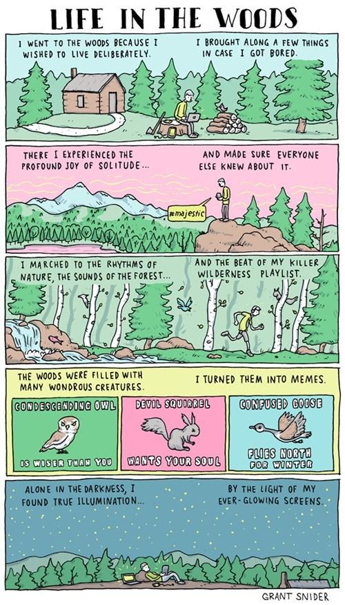 Webcomic humor internet comic - 6816283136