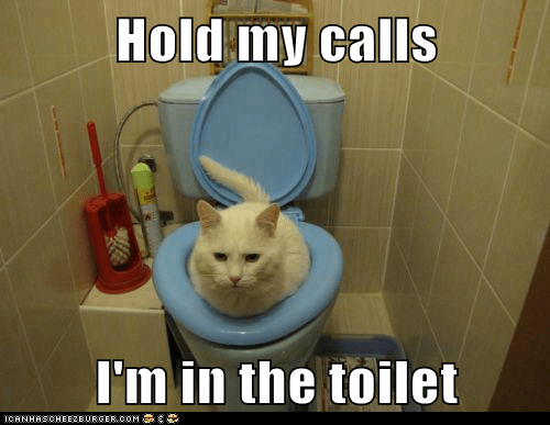 Hold my calls  I'm in the toilet
