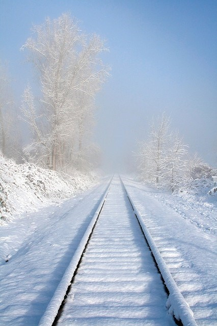 horizon,railroad tracks,winter,train