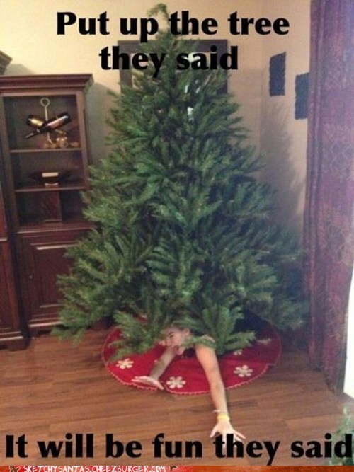 christmas trees it will be fun they said