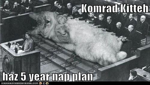 cat stalin kitty politics - 6816703488