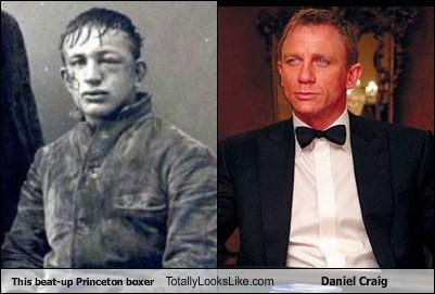 Daniel Craig,actor,TLL,boxer,funny