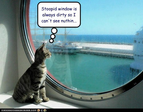 Cheezburger Image 6816878080