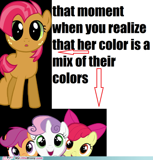 cmc,that moment,babs seed