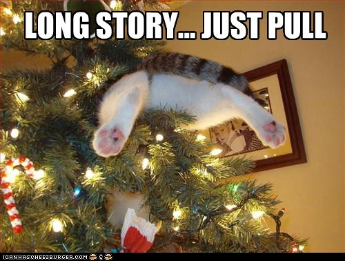 christmas 12 days of catmas captions tree stuck Cats - 6818007040
