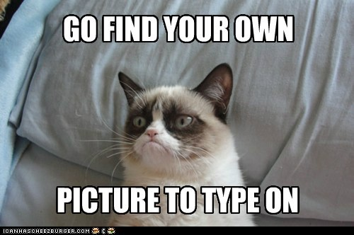lolcats captions tarder sauce meta Grumpy Cat Cats - 6818188800