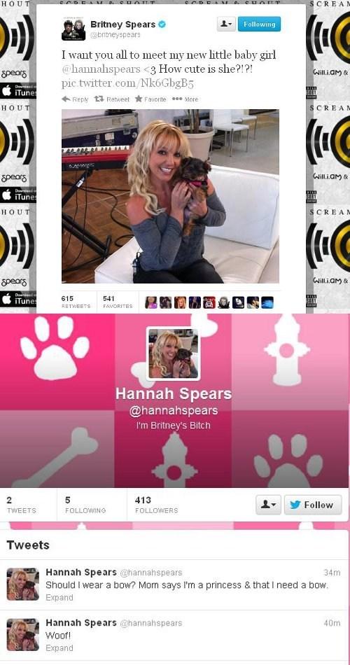 dogs,twitter,britney spears,celeb,hannah spears,tweet