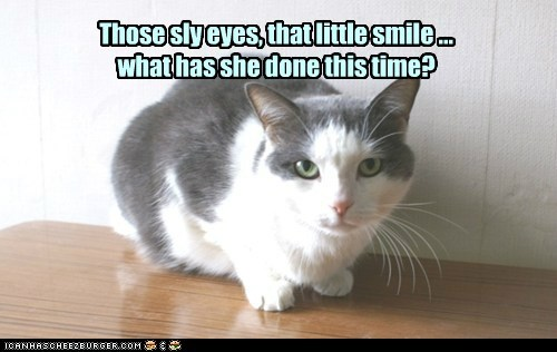 Those sly eyes, that little smile ... what has she done this time?